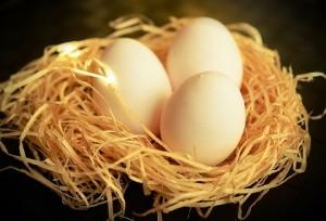 egg-1186756_960_720