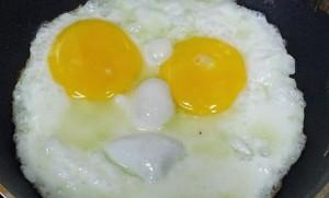 eggs-683597_960_720